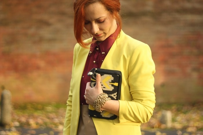 Outfit Alice by Temperley x Filofax Ikat Yellow (04)