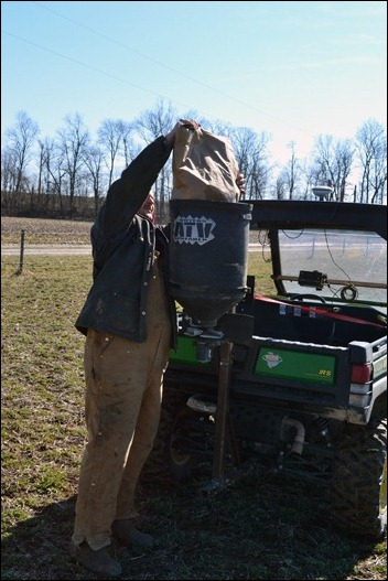 load clover seed