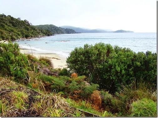 Stewart-Island10