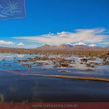 Arica - Parque Nacional Lauca  (23 de 48).jpg
