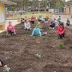 2012 » Primary Playground Planting