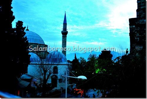 DSC_0221_Fotor