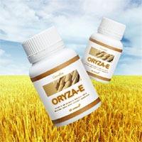 โอรีซา-อี (Oryza-e)