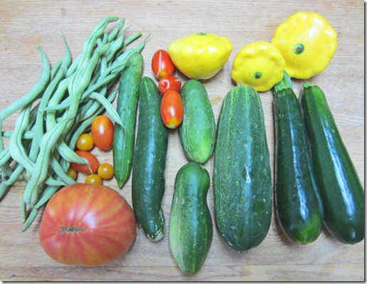 Harvest assortment with a Big Rainbow tomato