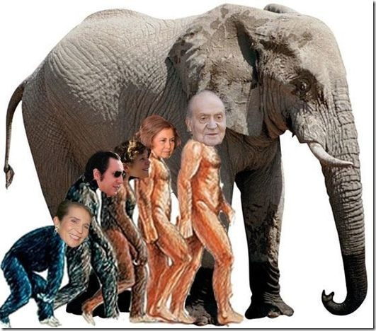 rey elefante3 (5)