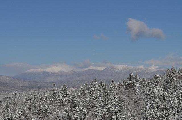 2013-11-28 Snow 007
