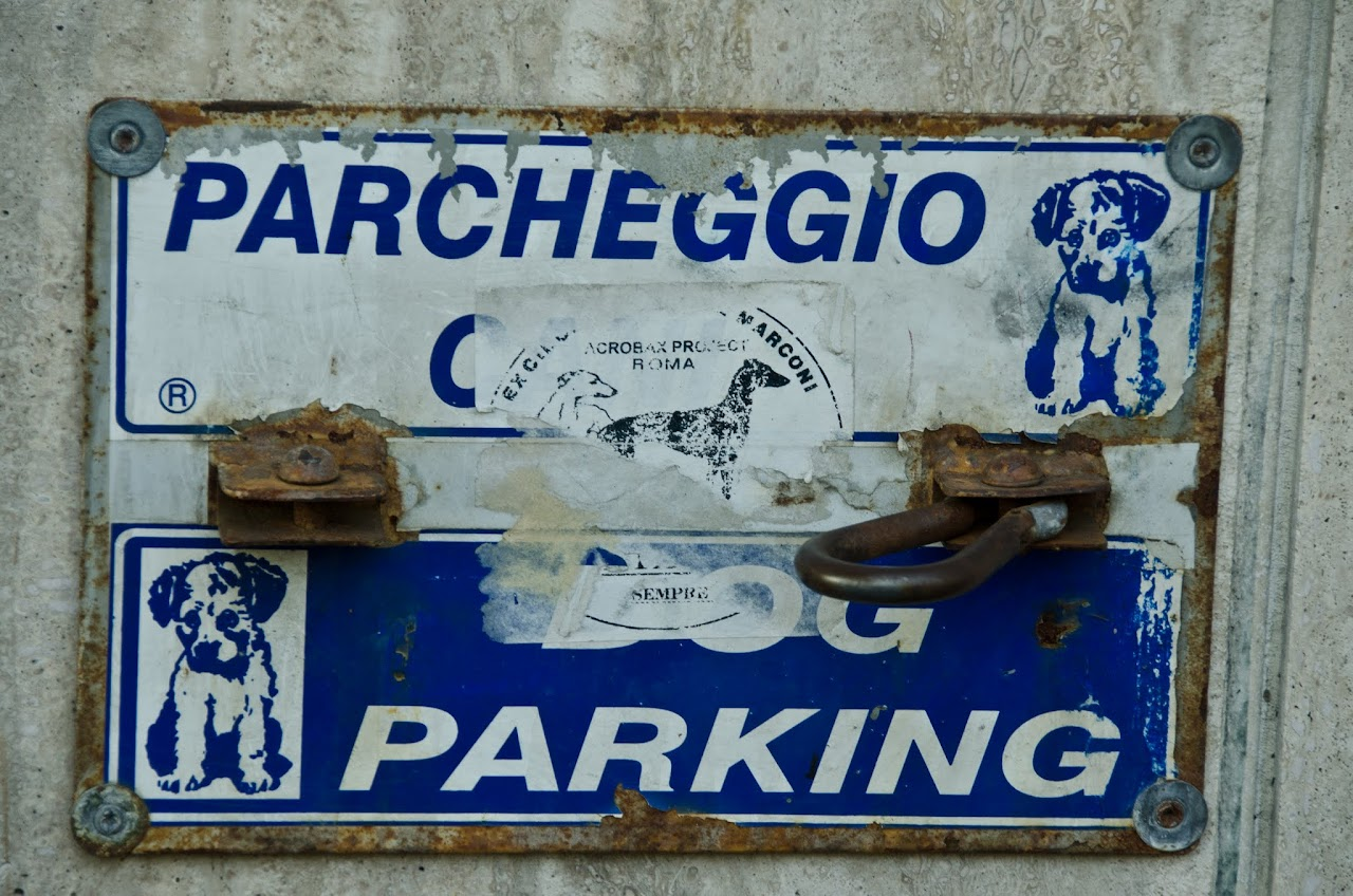 Dog parking