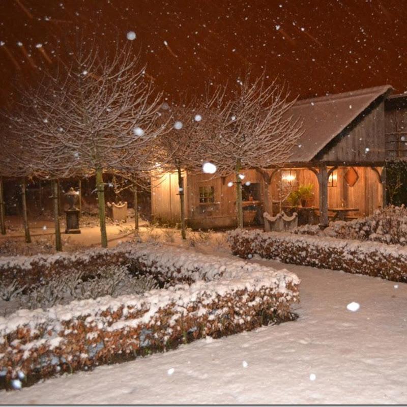 Hello from snowy Belgium