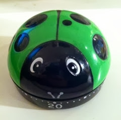 Green ladybug timer