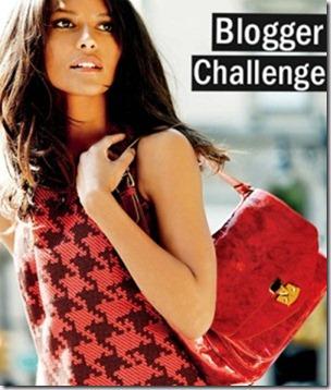 blogger-challenge-300x354