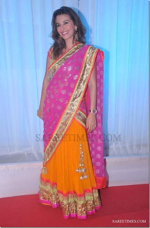 Perizaad_Zorabian_Pink_Yellow_Saree