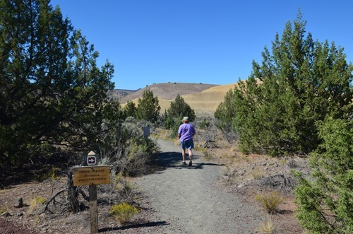 the short Leaf Hill Trail in the Painted Hills John Day Fossil Beds