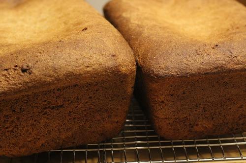 ezekiel-bread_1661