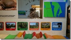 Habitat display part 2
