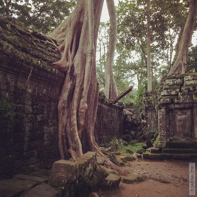 4. Ангкор Том, Angkor Tom