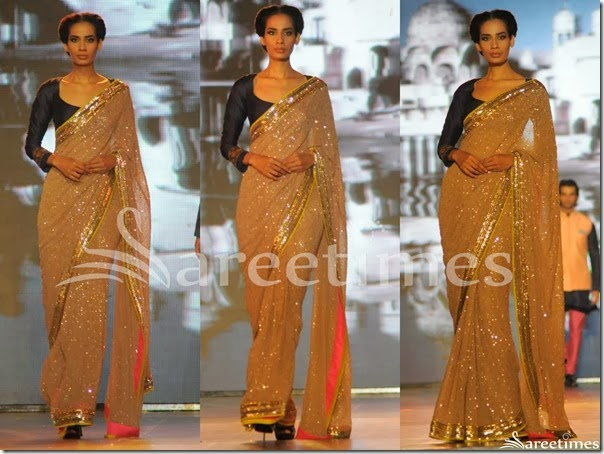 Manish_Malhotra_Embroidery_Saree