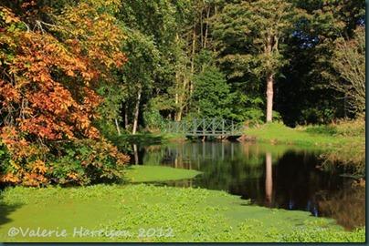26-ardwell-house-gardens