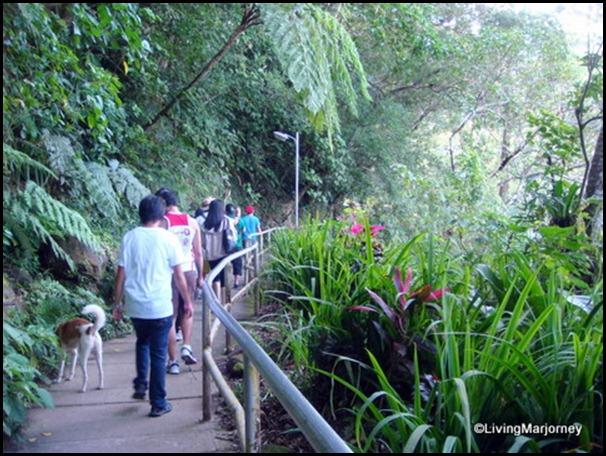 enroute Majayjay Falls