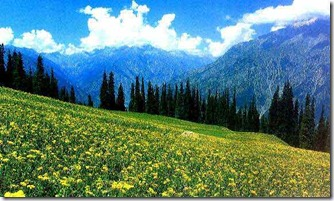 kashmir-photo