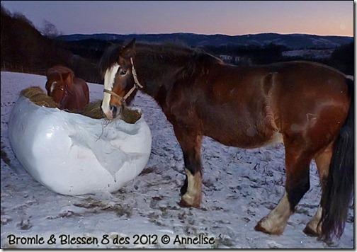 2012-8des-blessen_02