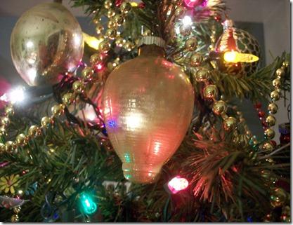 christmas trees 2011 011