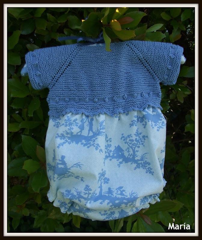 Ranita con jersey azulón-3