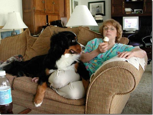 dog-mans-best-friend-24