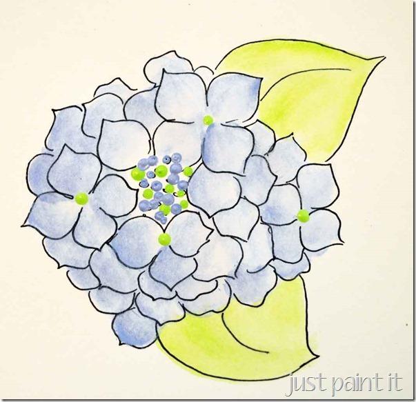 paint-hydrangea-C