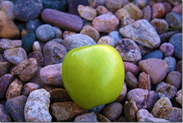Day 7. Fruit 2