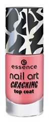 ess_CrackingTopCoat08