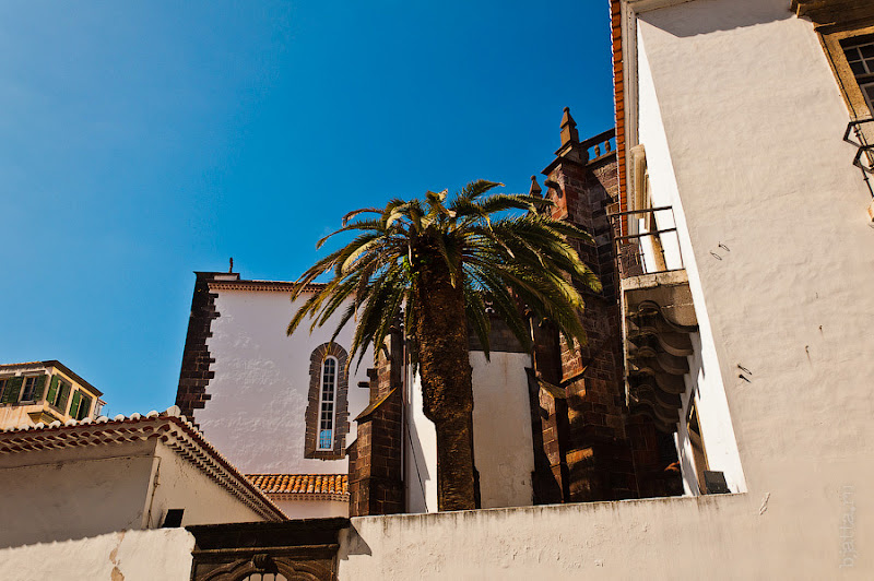 17. Фотопрогулка по улицам города. Улочки. Фуншал. Мадейра. Португалия. Круиз на Costa Concordia.