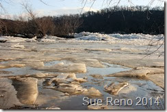 Susquehann River ice jam, by Sue Reno, Image 7