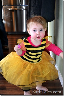 Busy 1 year old bee