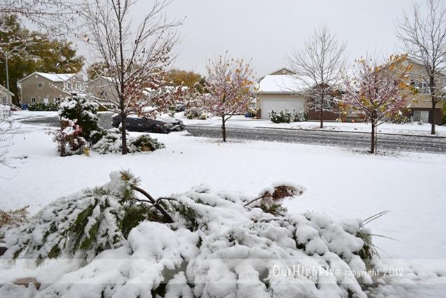 10-2012-First-snow-2