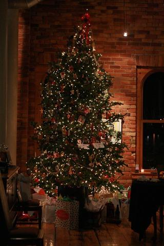 christmas 045
