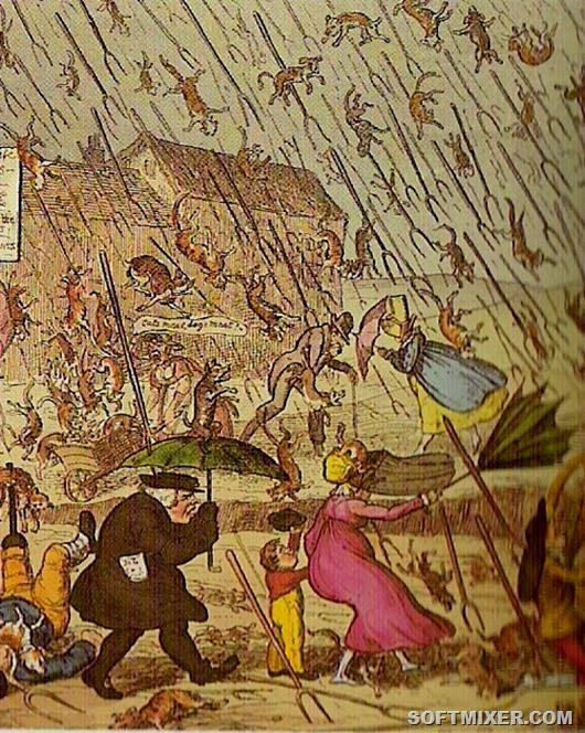 rain-animals