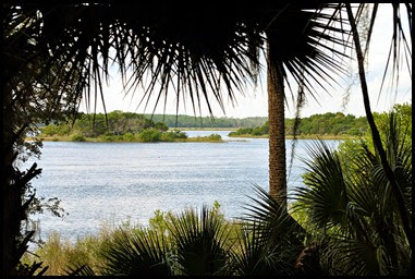 04e - View along the Matanzas River