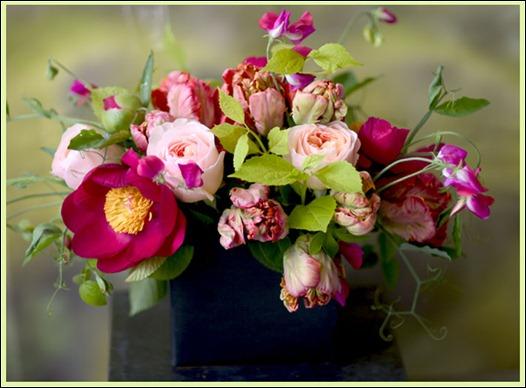 florali_wins00941 florali