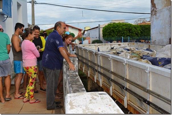 entrega do peixe 2015 (3)