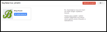 Google+ Sayfası