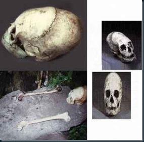 Klaus_Dona_esqueletos com um tamanho de 2,6 metros