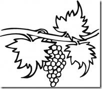 colorear uvas pintaryjugar (2)