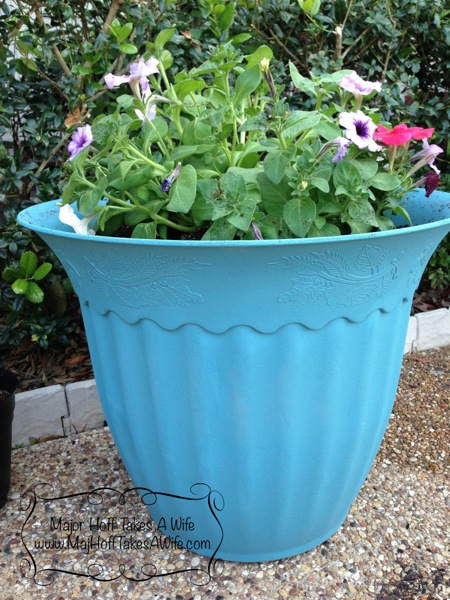 Bestblueplanter