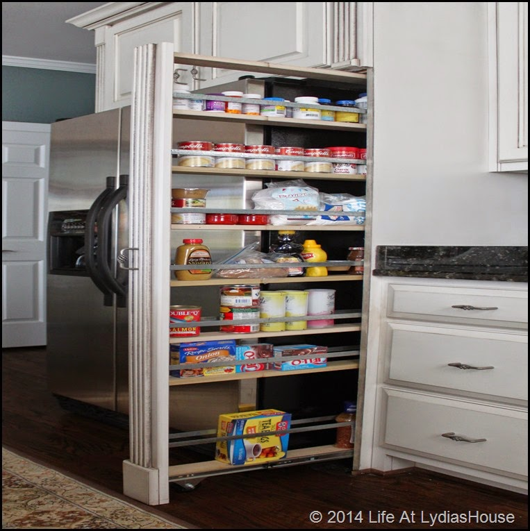 refrigerator cabinet pantry 15