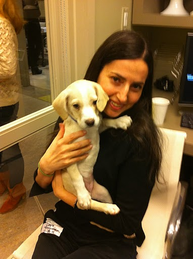 Zenith Media's Dara Fishman, here holding Natasha, works hard to put Purina's concern for animal welfare into action. (See link to Natasha's adoption info at end of the post.)