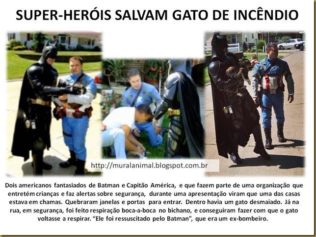 SUPER-HERÓIS SALVAM GATO DE INCÊNDIO