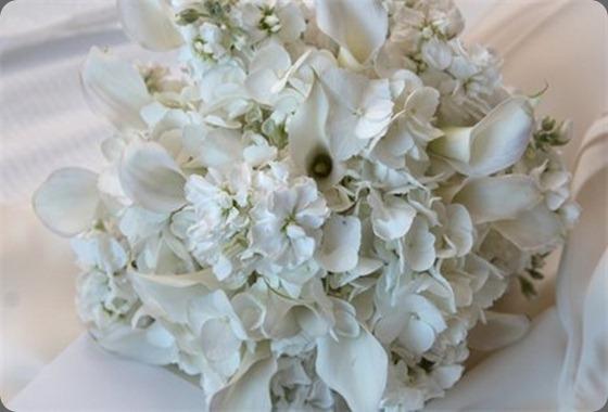 465_308_csupload_24832450 aj florals