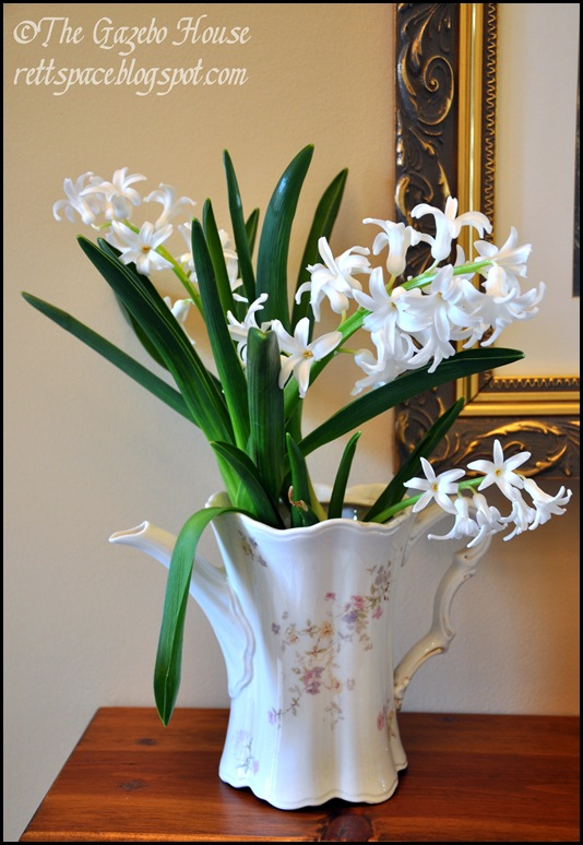 Liliacs, daffodills, cyclamen 019