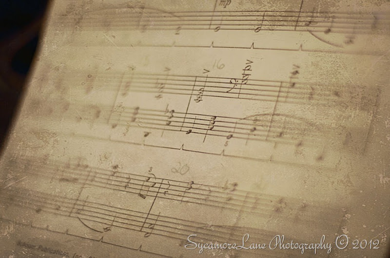 Music- SycamoreLane Photography