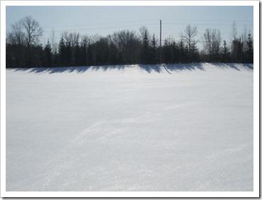 20120228_snow_001